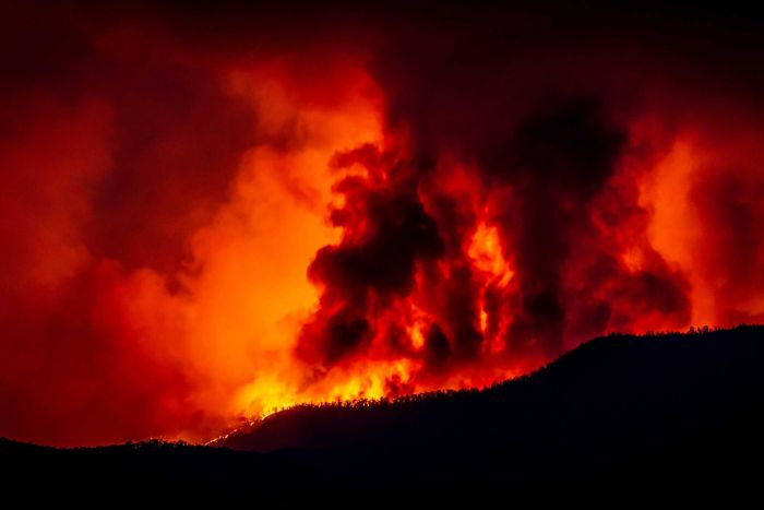 Can numbers help give us a sense of the unprecedented scale of this fire season? (Supplied: Markus Dirnberger)
