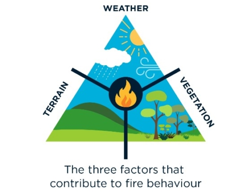 The 2019-20 bushfires: a CSIRO explainer