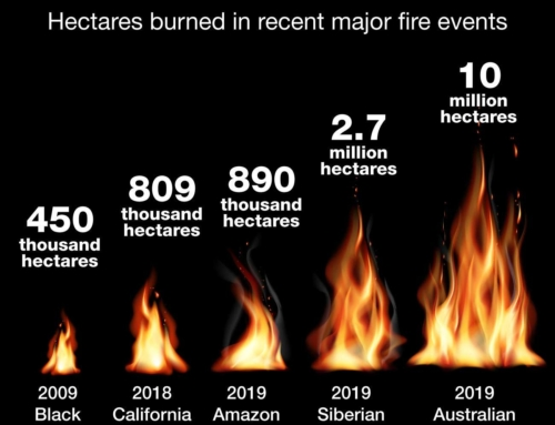 How the 2019 Australian bushfire season compares to other fire disasters